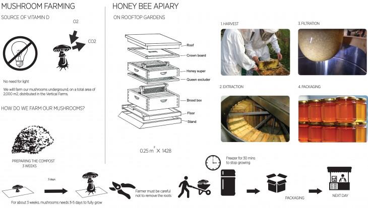 Mushroom and Honey production