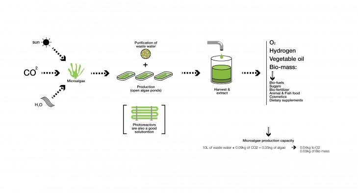 Algaetecture_Biomachine_03
