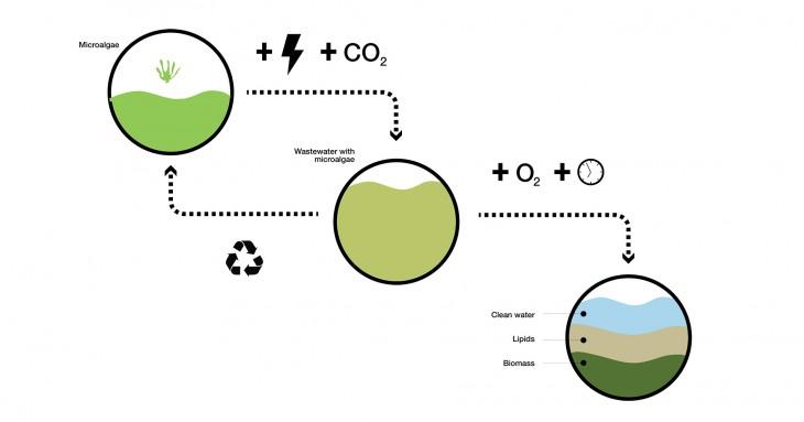 Algaetecture_Biomachine_08