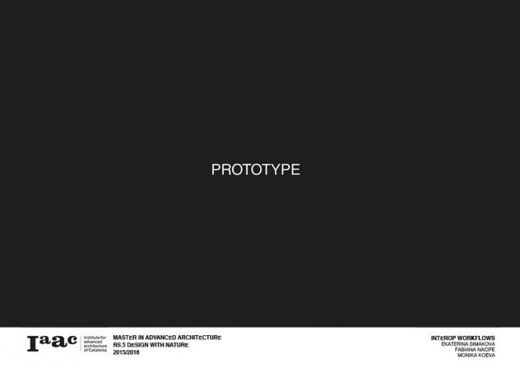 Presentation _ DWN10