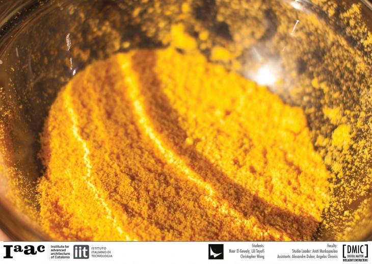 PIEL VIVO/ BIO-PLASTICA – Material Explorations – IAAC Blog