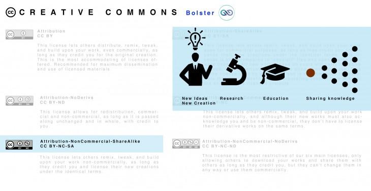 IAAC bolster_CC
