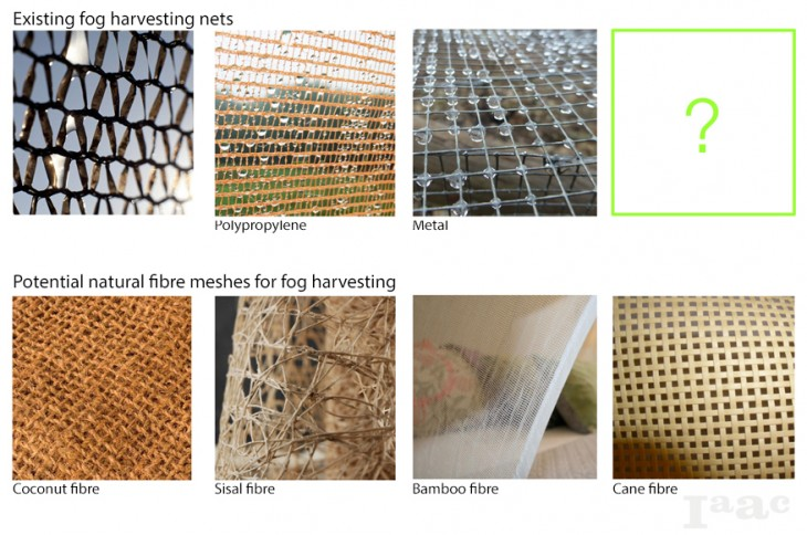 Biodegradable Mesh options