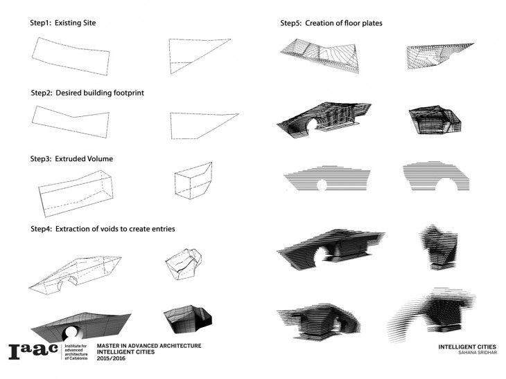Evolution of Form
