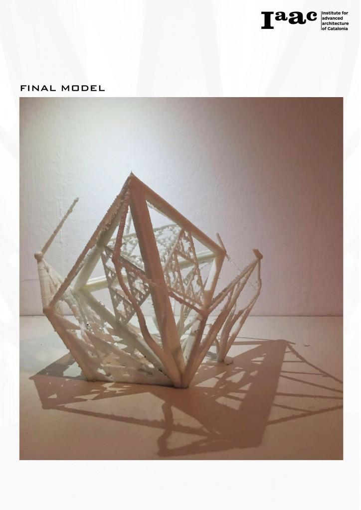 The Final Model