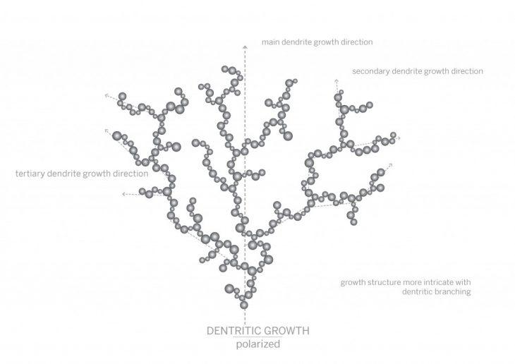polarized crystals growth