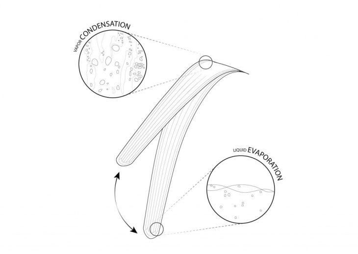 metabolic-design-diagram