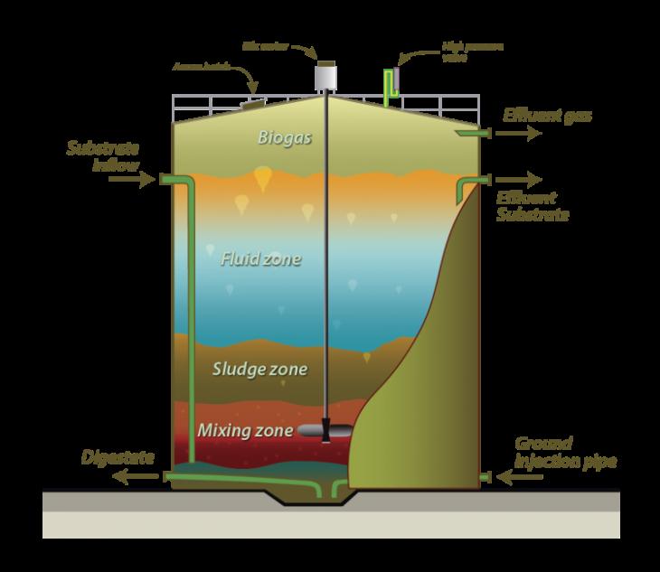 Biomass to Biofuel