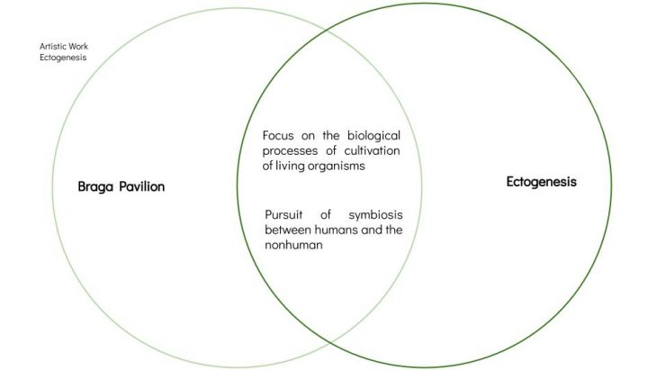 Comparison between the philosophies of the Braga Pavilion and the Ectogenesis experiment