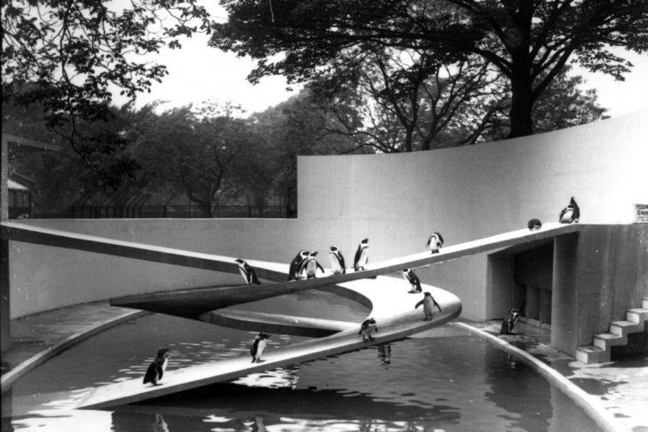 three fold logic of advanced architecture, iaac , iaac blog, maa,The Penguin Pool, Berthold Lubetkin + Tecton Group, 1934