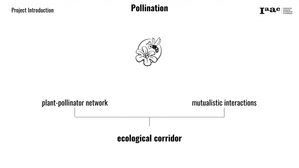 Pollination framework
