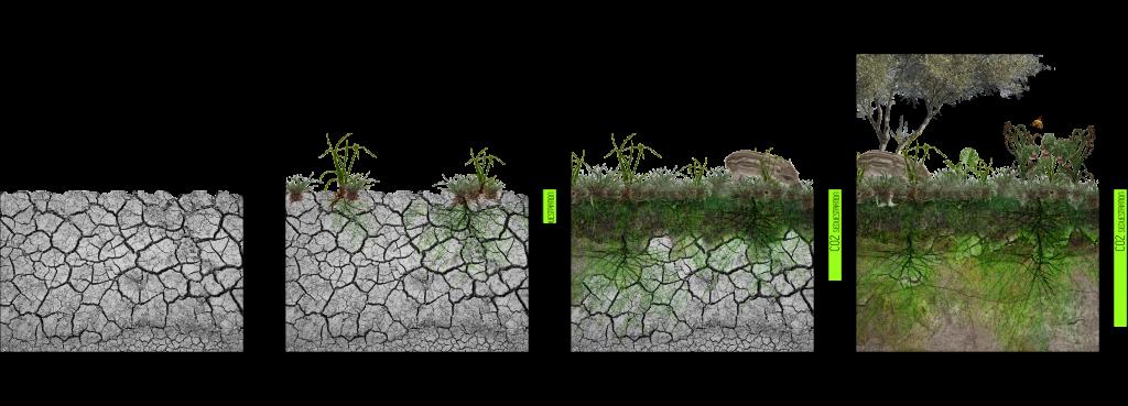 Recover Soils Diagram