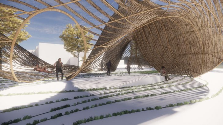 Interior, perspective, bamboo, lithification, banksia, generative nature