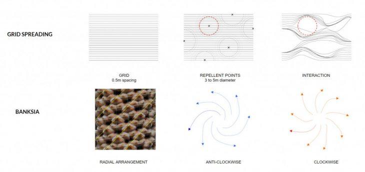 Natural processes, generative nature, lithification