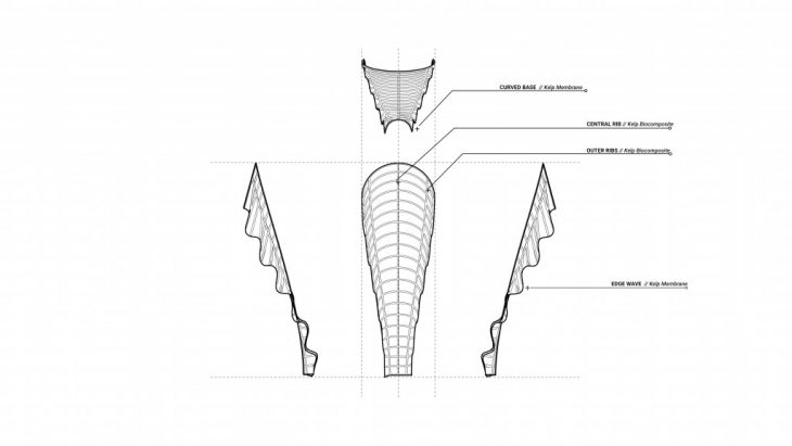KelpBiocompositMaterial_Membrane
